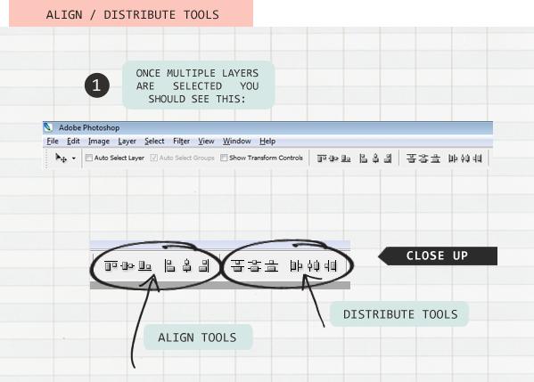 align distribute tools