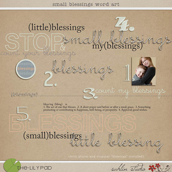 Small Blessings Word Art by Sahlin Studio