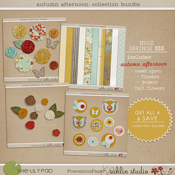 autumn afternoon: collection bundle