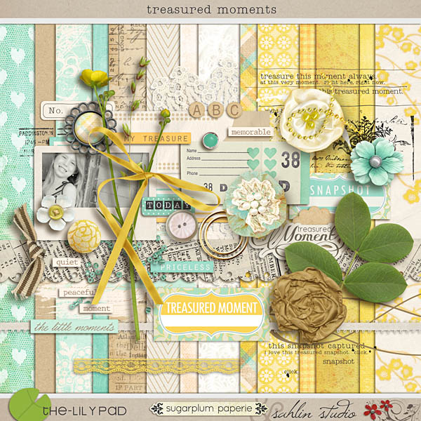Treasured Moments by Sahlin Studio and Sugarplum Paperie