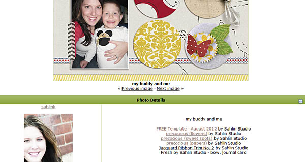 tracking your scrapbook credits