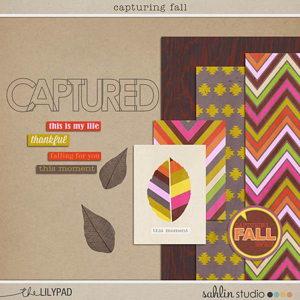 Capturing Fall FREEBIE by Sahlin Studio