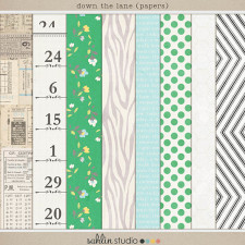 Down the Lane ( Papers) by Sahlin Studio