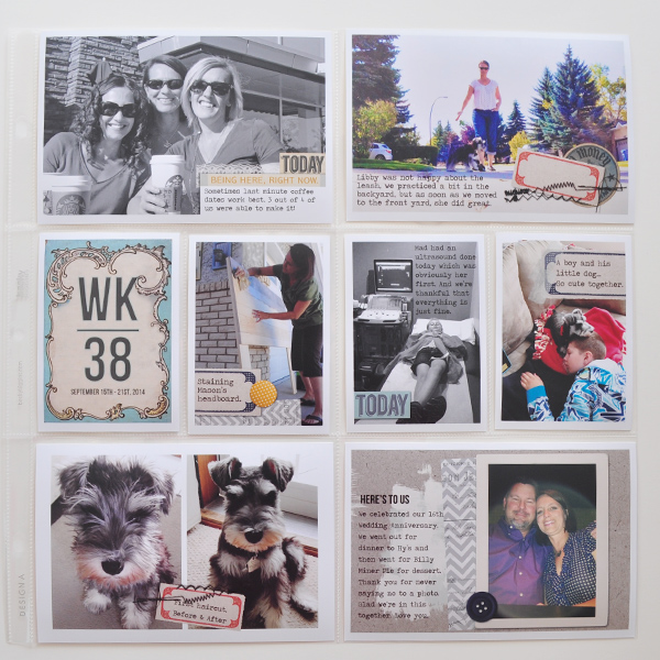 project life scrapbook layout created by ctmm4 featuring autumn frost by sahlin studio