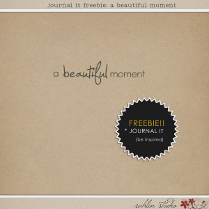 sahlinstudio_abeautifulmoment_preview