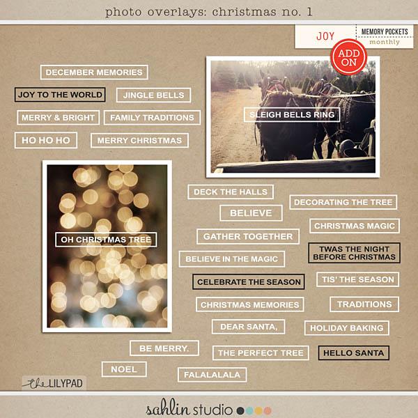 http://sahlinstudio.com/wp-content/uploads/2014/11/ss-tlp-photooverlays-christmas.jpg