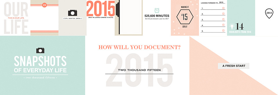How Will You Document 2015?