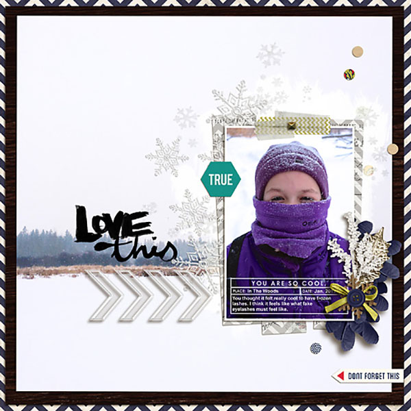 Love This digital scrapbooking page by HeatherPrins featuring Photo Journal No. 1 (Word Arts & Templates) by Sahlin Studio