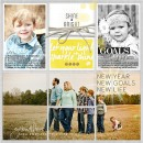 2015 Top 5 Goals digital Project Life by amymallory featuring Shine Bright Kit and Journal Cards by Sahlin Studio