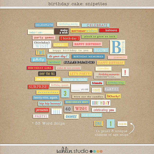Birthday Cake ( Word Snipettes) by Sahlin Studio