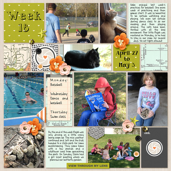 Week 18 digital pocket scrapbooking page by mnjenlittle using Viewpoint (Kit) by Sahlin Studio by Sahlin Studio - AddOn to Memory Pocket Monthly MPM Subscription