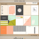 Viewpoint Journal Cards Sahlin Studio