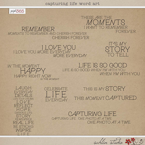 Capturing Life Word Art by Sahlin Studio
