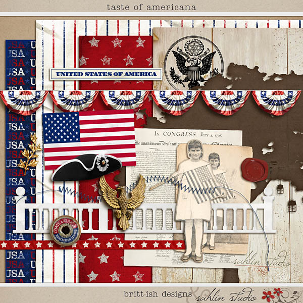 Taste of Americana by Britt-ish Designs and Sahlin Studio