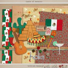 Taste of Mexico by Britt-ish Designs and Sahlin Studio
