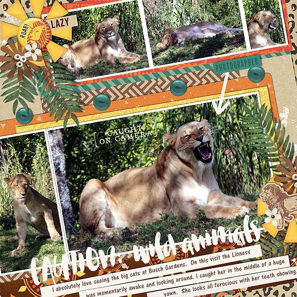 Zoo Caution Wild Animals Tiger digital scrapbook page using Project Mouse: Animal by Britt-ish Designs and Sahlin Studio