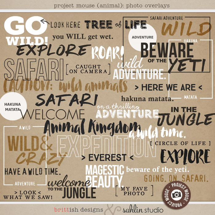 Project Mouse: Animal Photo Overlays Word Art  by Britt-ish Designs and Sahlin Studio -  Perfect for documenting Project Life for Animal Kingdom, safari,