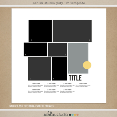 sahlinstudio_7july17template_preview