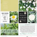 Partly Sunny digital Project Life scrapbooking layout using Spring Stories by Sahlin Studio - Perfect for spring, easter, park scrapbooking or in your Project Life!!
