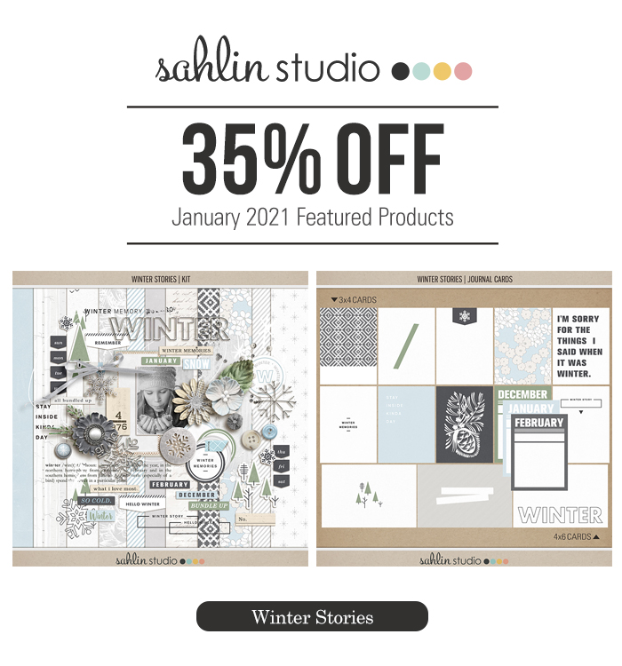 Winter Stories by Sahlin Studio