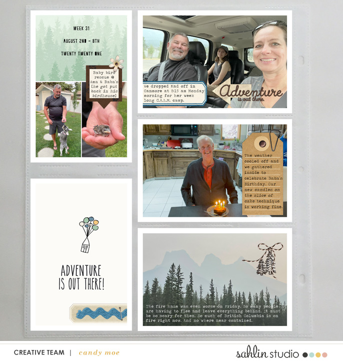 digital scrapbooking layout created by ctmm4 featuring Project Mouse (Wilderness) by Sahlin Studio and Britt-ish Designs
