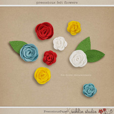 Precocious (Felt Flowers) by Sahlin Studio and Precocious Paper