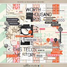 Worth a Thousand Words by Sahlin Studio