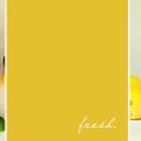 Digital Scrapbook Page by kellyklatt featuring Paint Swatch Templates by Sahlin Studio