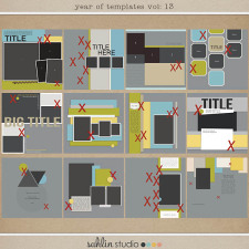 Year of Templates vol. 13 by Sahlin Studio