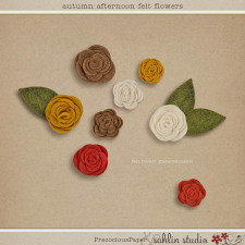 Autumn Afternoon: Felt Flowers by Sahlin Studio and Precocious Paper