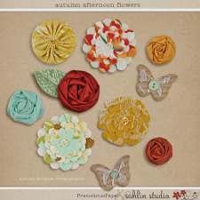 Autumn Afternoon: Flowers by Precocious Paper and Sahlin Studio