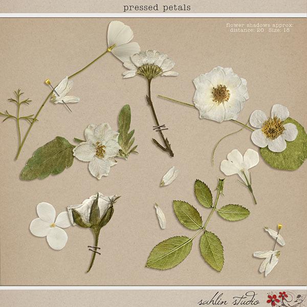 Pressed Petals by Sahlin Studio