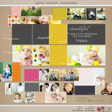 Paint Swatch Templates by Sahlin Studio