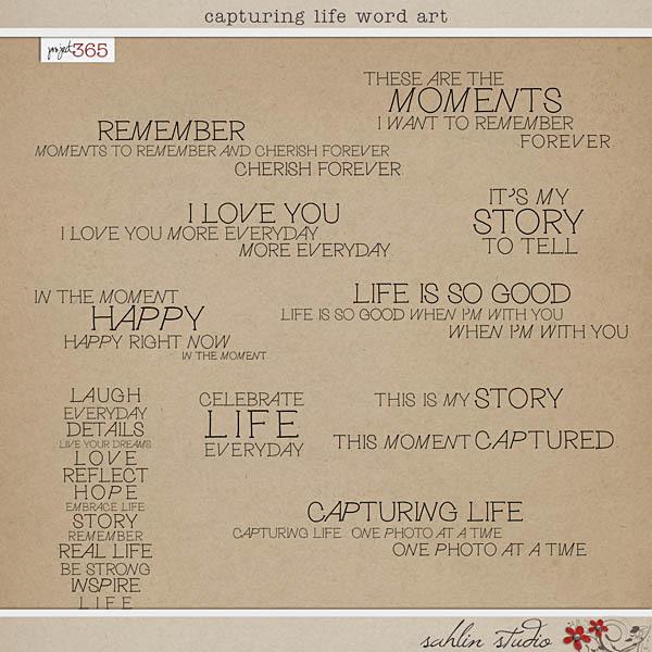 Capturing Life Word Art by Sahlin Studio