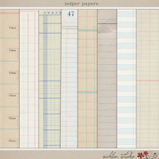 Ledger Papers by Sahlin Studio