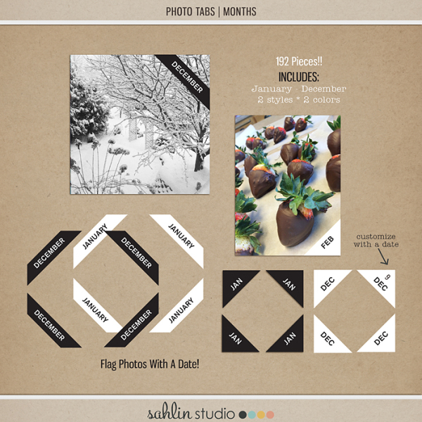 Photo Tabs | Months by Sahlin Studio - Perfect for Project Life or 365!!