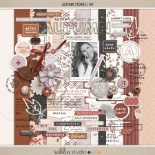 Autumn Stories | Kit by Sahlin Studio - Perfect for documenting your fall / autumn scrapbooks and Project Life albums!!