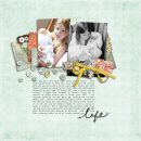 Life New Baby digital scrapbooking layout featuring Jan FREE Template by Sahlin Studio